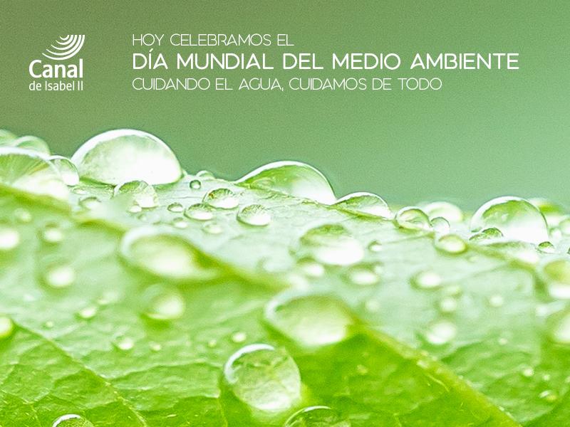 Celebramos el día mundial del medio ambiente. Cuidando el agua, cuidamos de todo